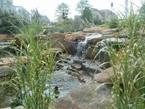 Landscaping, patios & ponds